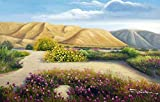 100% Hand Painted Desert Flowers Spring Southwest Landscape Canvas Oil Painting for Home Wall Art by Well Known Artist, Framed, Ready to Hang