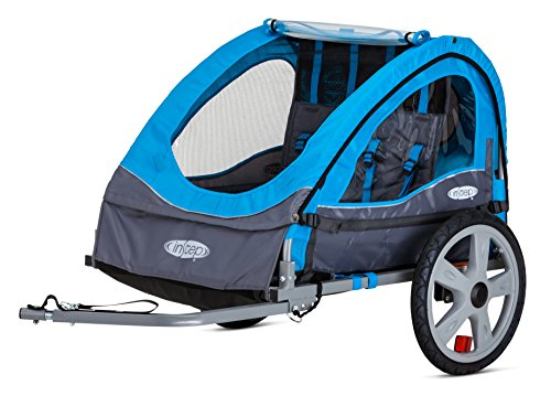 Discover Bargain InStep Take 2 Double Child Carrier Bicycle Trailer, 2-Passenger, Blue