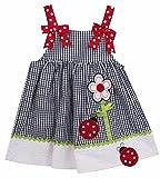 Rare Editions Baby Girl Navy Gingham Seersucker Ladybug Dress (12m-6x) (6)