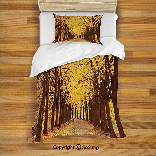 SoSung Landscape Kids Duvet Cover Set Twin Size, Botanical Garden Autumn Leaves in The Fall Linden Alley in Kiev Ukraine Image 2 Piece Bedding Set with 1 Pillow Sham,Yellow Brown ()