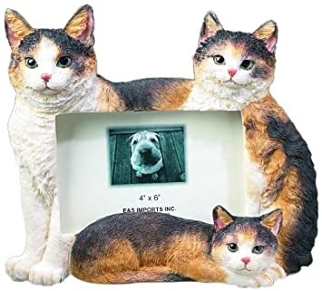es pets 35297 2 large cat frames