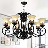 8-Light Black Wrought Iron Chandelier with Glass Shades (D-6318-8S) Review