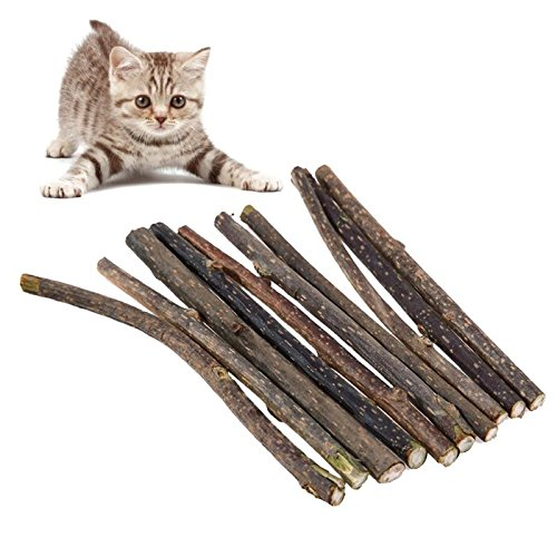 HATOLY 10pcs Cat Toy Cleaning Teeth Pure Natural Catnip Snacks Pet Cat Molar Toothpaste Stick Natural Silvervine Toys for Cats