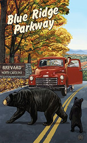 Northwest Art Mall PAL-6269 TWS Brevard North Carolina Blue Ridge Parkway Truck with Sign 11x17 Print by Artist Paul A. - Brevard Mall