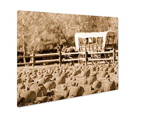 Ashley Giclee Pumpkin Patch, Wall Art Photo Print On Metal Panel, Sepia, 24x30, Floating Frame, AG6121582 -