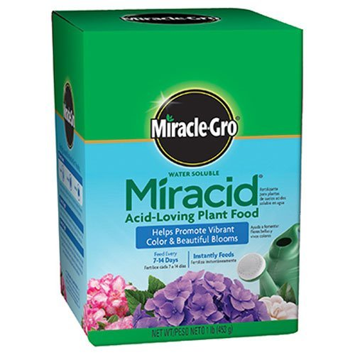 Scotts Company Miracle-Gro 1750011 Water Soluble Miracid Acid-Loving Plant Food, 1-Pound (3)