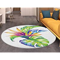 Plant Non Slip Round Rugs Tropical Leaves and Monstera with Abstract Color Scheme Hawaiian Floral Elements Oriental Floor and Carpets Multicolor