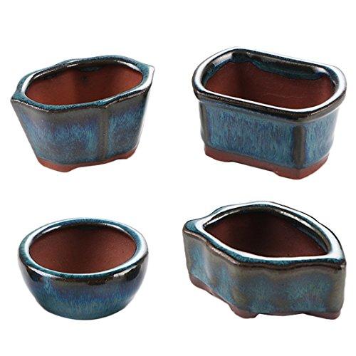 Happy Bonsai 4 Mini Glazed Pots/Small Succulent Plant Flower Planters ()