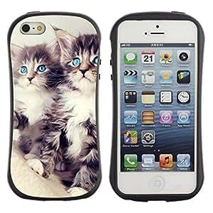 "Hypernova Slim Fit Dual Barniz Protector Caso Case Funda Para Apple iPhone SE / iPhone 5 / iPhone 5S [Azul Principal Coon Ojos Lindo""]"