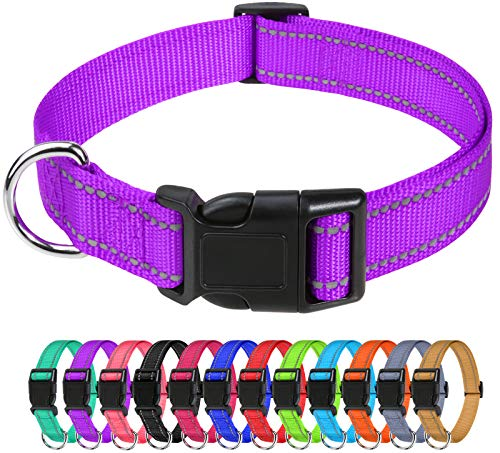 TagME Reflective Nylon Dog Collars, Adjustable Classic Dog Collar with Quick Release Buckle for Small Dogs, Purple, 5/8″ Width