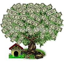 30PCS money tree moneymaker tree seeds bonsai seeds for home garden and home decoration ,give you good luck and wealth