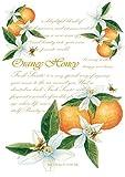 Fresh Scents Scented Sachets - Orange Honey, Lot of 6