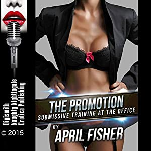 The Promotion Audiobook