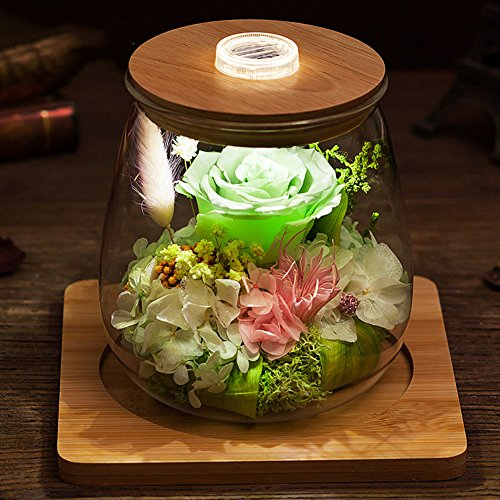 Glass Eternal Flower Gift Box/Rose Preservation Ornaments/ Creative Holiday Gifts-D (Mothers Day Giftsd)