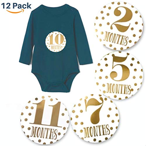 Stickers - 12 Pack of Round Monthly Belly Stickers - Gender Neutral for Boys & Girls - Months, Milestones, First Year - Special Baby Shower & Registry Gift - Circle 4