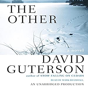 The Other Audiobook