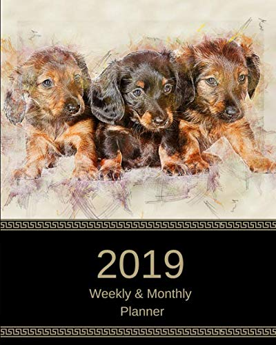 (2019 Weekly and Monthly Planner: Dachshund Puppies Daily Organizer -To Do -Calendar in Review/Monthly Calendar with U.S. Holidays–Notes Volume 44)