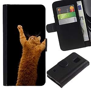 YiPhone /// Tirón de la caja Cartera de cuero con ranuras para tarjetas - Gato anaranjado - Samsung Galaxy S5 V SM-G900