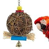 PAMAGOO Parrot