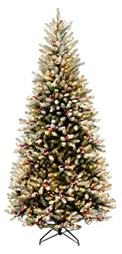 National Tree CO-Import Celebrations Dunhill Fir Slim Entrance, 7 FT Pre-lit Tree (Dunhill Pine Tree)