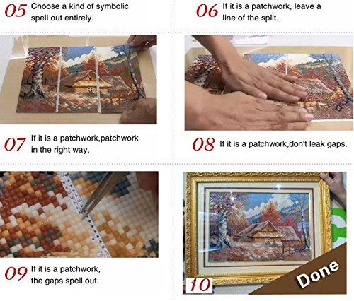 Set Diamond Painting Strass Mosaik Bild Basteln Bastelset Steine Rosen Pink 40cm