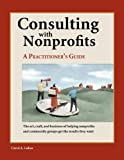 Consulting with Nonprofits : A Practitioner's Guide