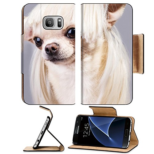 MSD Premium Samsung Galaxy S7 Flip Pu Leather Wallet Case beautiful dog close up portrait Image ID (Cute And Easy Hairstyles For Halloween)