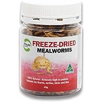 Pisces Enterprises Freezedried Mealworms 40g