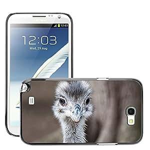 Super Stella Slim PC Hard Case Cover Skin Armor Shell Protection // M00146083 Emu Animal Bird Nature Bill // Samsung Galaxy Note 2 II N7100