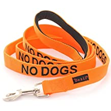 NO DOGS Orange Color Coded Nylon 6 Foot Long Luxury Padded Handle Dog Leash (Not Good With Other Dogs) PREVENTS Accidents by Warning Others of Your Dog in Advance