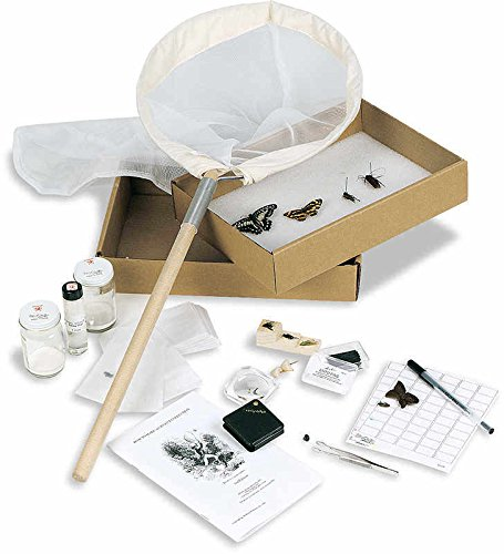 Student Insect Collecting & Mounting Kit (Insect Collecting)