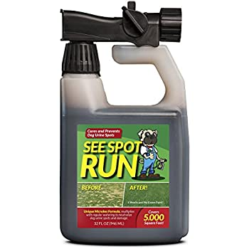 Amazon Com See Spot Run Lawn Protection Dog Urine Grass
