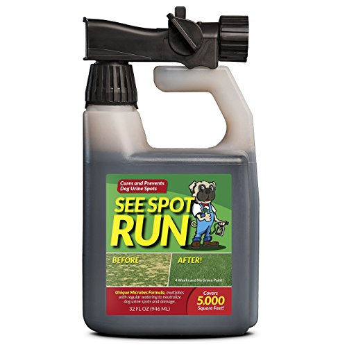 Spreader End - See Spot Run Lawn Protection - Dog Urine Grass Saver That Cures and Prevents Burn Spots. Pet Safe, All Natural Lawn Saver for Dogs. Safe to Use With Your Lawn Fertilizer. Made in USA Lawn Care Product