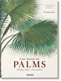 Martius: The Book of Palms XL (Multilingual Edition)