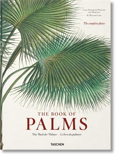 Martius: The Book of Palms XL (Multilingual Edition) by TASCHEN