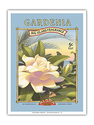 (Gardenia - Aloha Seeds - Big Island Seed Company - Big Island Fragrance - Vintage Seed Packet by Kerne Erickson - Master Art Print - 9in x 12in)