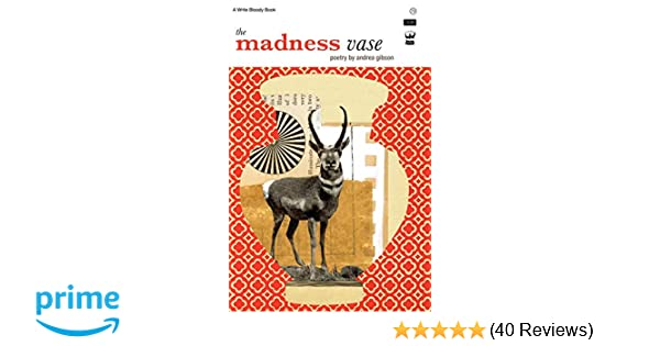 The Madness Vase By Andrea Gibson Andrea Gibson 9781935904373