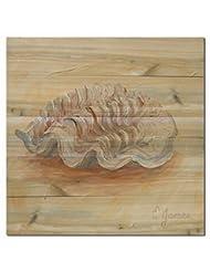 WGI-GALLERY 2424-1 Sea Shell No.1 Wooden Wall Art