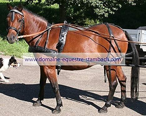 IDEAL EQUESTRIAN Arnés GP un caballo Improvement anatómico - COB ...