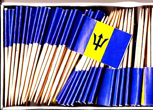 - Barbados Mini Country Toothpick Flags, 100 Small International Mini Flag Cupcake Toothpicks or Cocktail Sticks & Picks (Barbados, 1 Box of 100-100 Total Toothpicks)