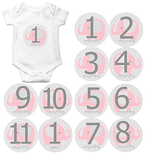 Gift Set of 12 Round Keepsake Photography Monthly Baby Stickers with Pink and Gray Elephants MOSG044