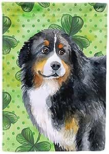 Caroline tesoros del bb9819chf perro de montaña bernés bandera lona casa tamaño de la de San Patricio, grande, Multicolor
