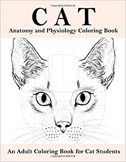 Amazon Cat Anatomy And Physiology Coloring Book An Adult For Studentshelpful Vet ClassA Fact Filledguide Cats Labreference