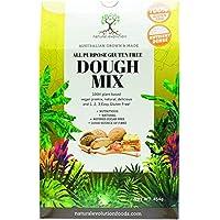 Natural Evolution All Purpose Gluten Free Dough Mix, 454 g