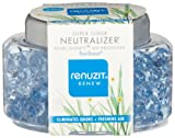 Dial 1723319 Renuzit Super Odor Neutralizer Pearl Scents Pure Breeze Air Freshener, 5.64oz Bottle (Pack of 8)
