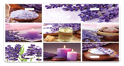(Lunarable Spa License Plate, Lavender Garden Alike Themed Relaxing Candles Stones Herbal Salt Elements Image, High Gloss Aluminum Novelty Plate, 5.88