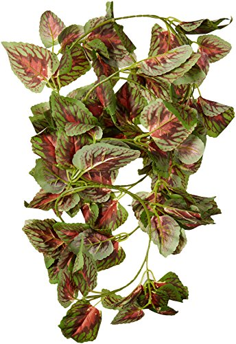 (Fluker Labs SFK51017 Repta Vine Small Animal Hanging Vine, Red Coleus)