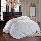 Cheer Collection Luxury All Season White Goose Down Alternative Comforter (King)