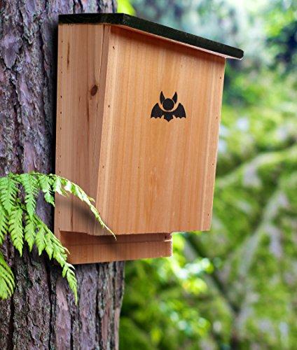 The 8 best bat houses for outside