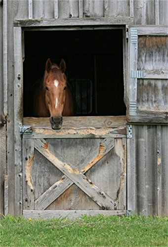 CSFOTO 5x7ft Background for Horse Stable Horse Yard Photography Backdrop Brown Head Weathered Wood Door Horse Racing Derby Pet Animal Barn Farm Holiday Vacation Photo Studio Props Wallpaper -